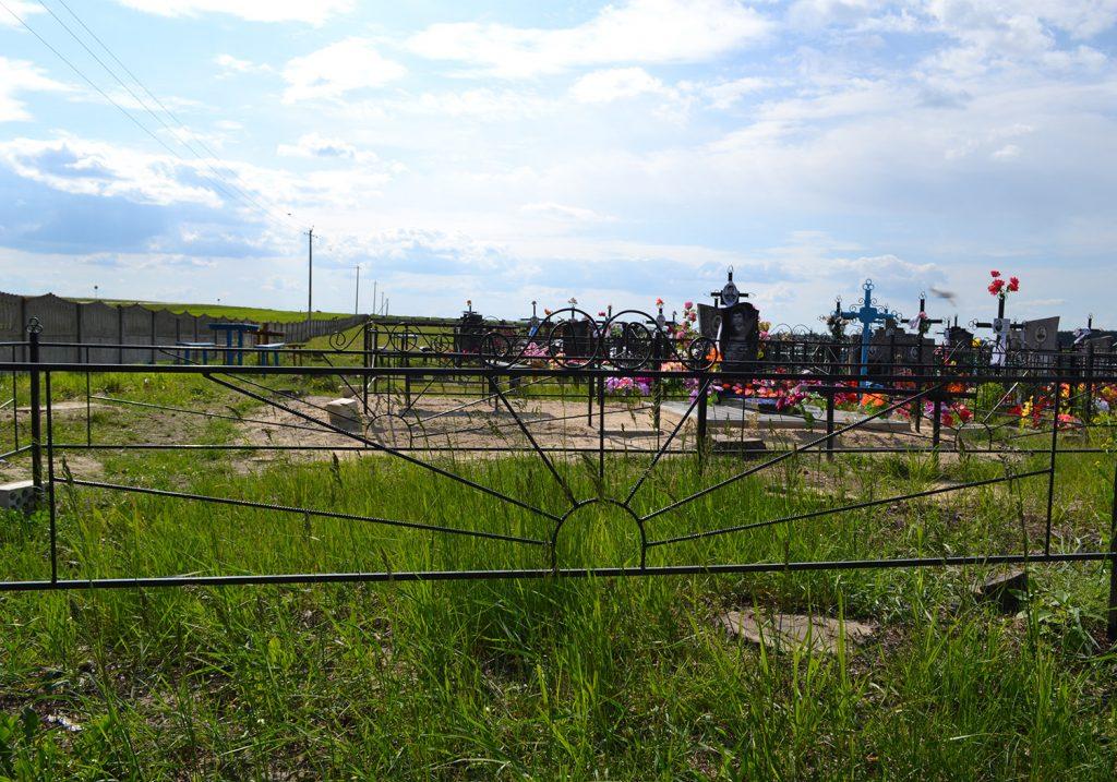 Металлическая ограда: 001